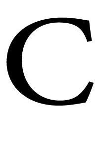 کربن اکتیو یا کربن فعال